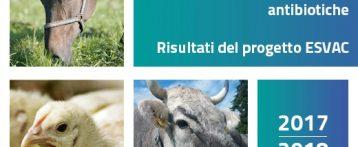 Medicinali veterinari contenenti sostanze antibiotiche. È online la relazione annnuale sull'andamento delle vendite. Diminuite di oltre il 34% dal 2011 al 2018