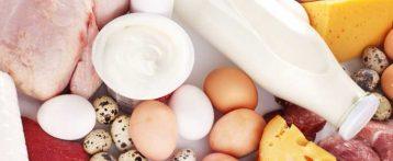 Rasff, Relazione sul sistema di allerta rapido europeo per alimenti e mangimi, dati 2019. Picco di segnalazioni: mai così da vent'anni