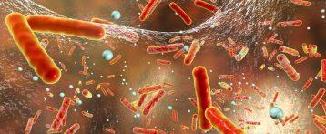 Report Efsa-Ecdc. Infezioni di origine alimentare, si mantengono alti i livelli di resistenza nei batteri. In particolare SalmonellaeCampylobacter