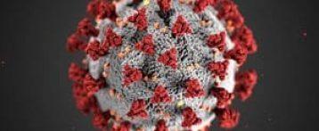 Infettivologi in allerta. «Virus indebolito? No, il pericolo resta». Il documento contesta le tesi di Remuzzi e altri 9 medici