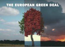 I Pfas nel 2020: spunti per la medicina preventiva veterinaria nell'ambito del 'green deal' lanciato dalla Commissione europea