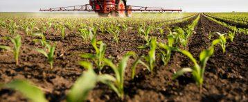 Pesticidi negli alimenti: Efsa ha presentato gli ultimi dati. Ecco i tenori di residui riscontrati nell'intero territorio in un paniere di prodotti di largo consumo.