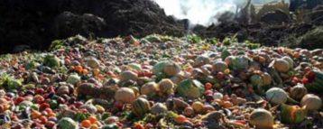 Il cibo sprecato nel mondo vale 345 miliardi di euro. Preoccupanti le indicazioni del Food sustainability index della Fondazione Barilla