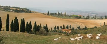 """Presentato a Firenze il libro bianco """"Sanità pubblica veterinaria e Sicurezza alimentare in Toscana"""" curato da Sivemp e Simevep regionali"""