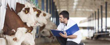 Modifica orario servizio dirigenti veterinari: il presidente Fvm Grasselli scrive al governatore Zaia: no a deroghe unilaterali al contratto