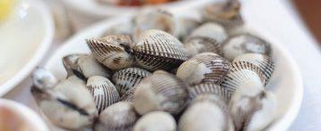 Molluschi bivalvi, nuove procedure per la sicurezza. Tavolo tecnico della mitilicoltura friulana