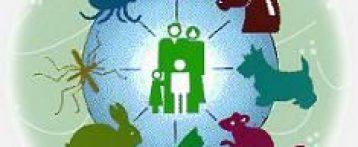 L'approfondimento. Report Ecdc Efsa 2017 su zoonosi e malattie a trasmissione alimentari: focus sulla situazione nazionale